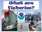 What are fisheries?