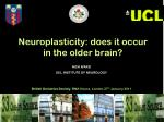 NICK WARD UCL INSTITUTE OF NEUROLOGY