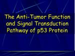 The Anti-Tumor Function and Signal Transduction Pathway of p53 Protein