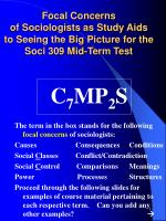 C 7 MP 2 S The term in the box stands for the following  focal concerns  of sociologists: