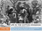 Life in the Cotton Kingdom