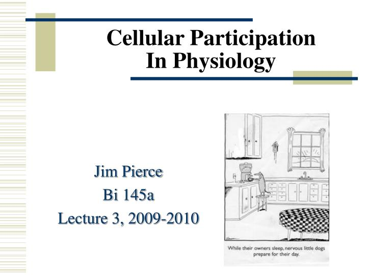 cellular participation in physiology n.