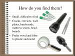 How do you find them?