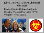 Libya Destroys Its Own Chemical Weapons