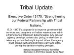 "Executive Order 13175, ""Strengthening our Federal Partnership with Tribal Nations ."""
