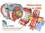 Heavy-Ions in CMS