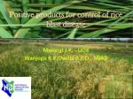 Positive products for control of rice  blast disease
