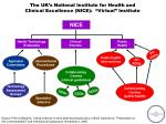 """The UK's National Institute for Health and  Clinical Excellence (NICE):  """"Virtual"""" Institute"""