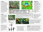 SYCAMORE CLASS YEAR 6 Curriculum Letter – Spring 14