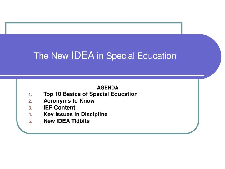 the new idea in special education n.