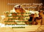 Promoting Literacy through Play Environment