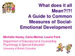 What does it all Mean?!?! A Guide to Common Measures of Social-Emotional Development