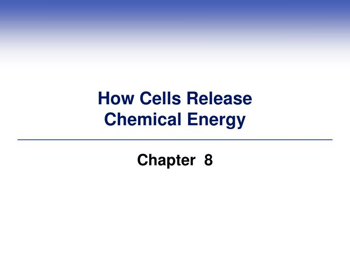 how cells release chemical energy n.