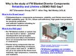 Why is the study of FW/Blanket/Divertor Components Reliability and Lifetime a DEMO R&D Gap?