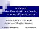 On-Demand  View Materialization and Indexing  for Network Forensic Analysis