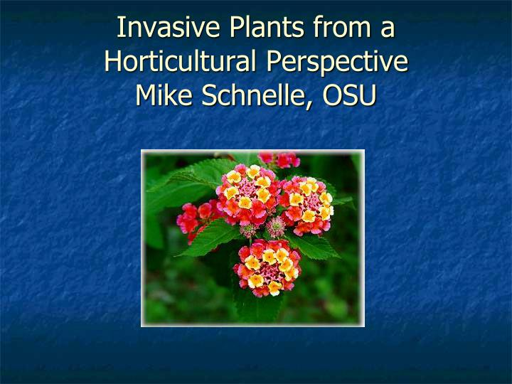 invasive plants from a horticultural perspective mike schnelle osu n.