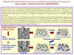Materials World Network: Design of responsive materials via mixed polymer brush approach