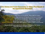 Fire History and Forest Succession in Yellow Pine Stands of the Appalachian Mountains