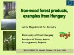 Non-wood forest products, examples from Hungary