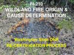 FI-210 WILDLAND FIRE ORIGIN &  CAUSE DETERMINATION