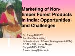 Marketing of Non-timber Forest Products in India: Opportunities and Challenges