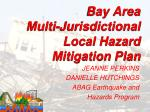 Bay Area  Multi-Jurisdictional Local Hazard Mitigation Plan