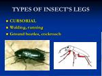 TYPES OF INSECT'S LEGS