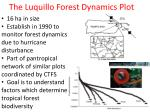 The Luquillo Forest Dynamics Plot