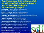 Can Subsurface Drip Irrigation (SDI) be a Competitive Irrigation System