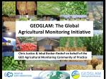 GEOGLAM: The Global Agricultural Monitoring Initiative