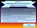 Plant morphology as a division of Botany.