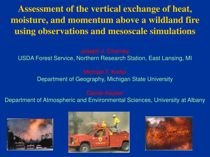 PPT - Background Observed meteorological conditions WRF simulation