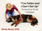 """I've Fallen and I Can't Get Up"" Assessing Acute Collapse"
