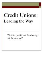 Credit Unions:  Leading the Way