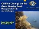 Climate Change on the Great Barrier Reef Management efforts and challenges