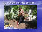 Dig trenches for the polyline