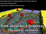 DNA-decorated graphene chemical sensors