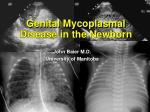 Genital Mycoplasmal Disease in the Newborn