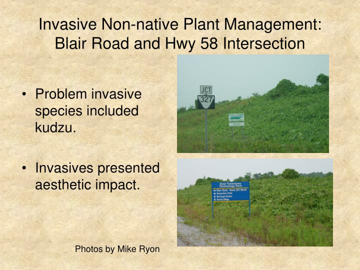 invasive non native plant management blair road and hwy 58 intersection n.
