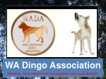 WA Dingo Association (Warning.. Some images in this presentation may cause distress)