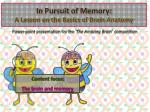 In Pursuit of Memory: A Lesson on the Basics of Brain Anatomy