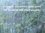 Synoptic situations associated  to floods in the river mouths