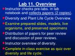 Lab 11. Overview
