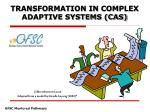 TRANSFORMATION IN COMPLEX ADAPTIVE SYSTEMS (CAS)