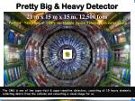 Pretty Big & Heavy Detector