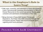 What is the Employee's Role in Leave Traq?