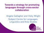 Towards a strategy for promoting languages through cross-sector collaboration