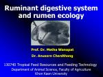 Ruminant digestive system and rumen ecology