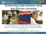 Enhancing trade between Arab and African countries