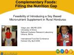 Complementary Foods: Filling the Nutrition Gap